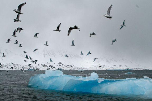 Arktis smelter. Det skyldes ikke bare varmen.