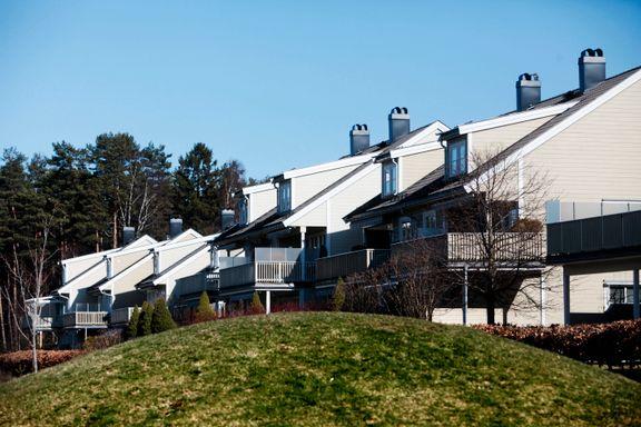 Seks typiske saker naboer krangler om: Dette er reglene og løsningene