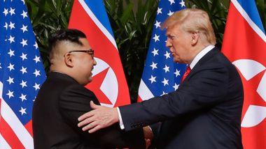 Ny bok avdekker brevveksling mellom Trump og Kim