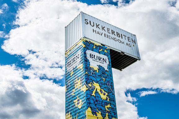 Den lille øya Sukkerbiten var et flott friområde ved fjorden. Nå kan den bli en plass for spesielt interesserte.