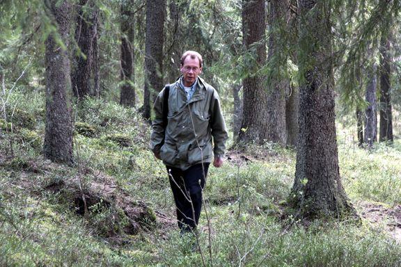 Regelendring kan gi frislipp for skogshugst i Marka