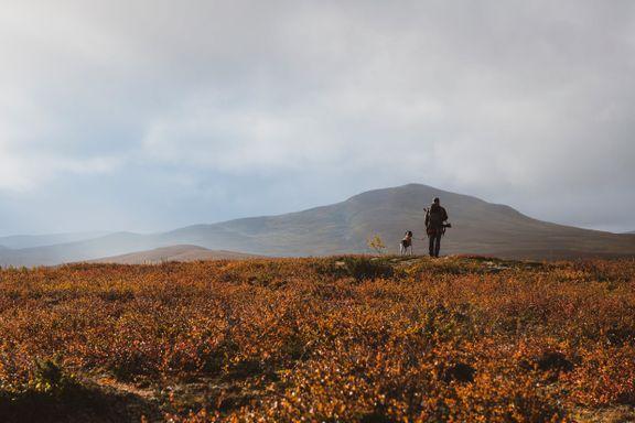 Noen deler av Norge har flere ryper enn andre. Her er de beste stedene å jakte.