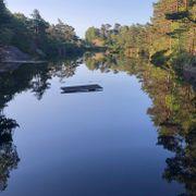 Mann funnet død i vann på Gimlekollen i Kristiansand
