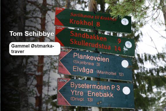 Er det så lurt å verne Østmarka?