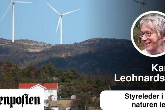 Vindkraftutbyggingen vil rasere norsk natur i hei, skog og fjell.