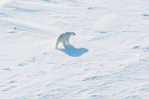 Russland vil satse på bosetting i Arktis