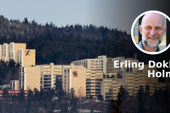 Ingen andre steder i Norge finnes det et like merkverdig, originalt og radikalt boligprosjekt som Romsås