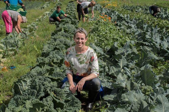 Familien dyrker maten sin selv for under 3000 kroner