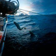 Havet har formet Norge og nordmenn siden tidenes morgen, i en ny bok forteller Per Anders Todal hvordan.