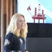 På plass som ny toppsjef i Norsk olje og gass