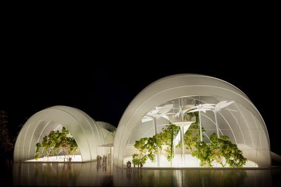 UiO: Idrettshall vil ødelegge for tropisk regnskog på Tøyen