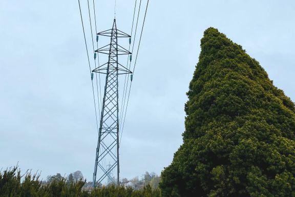 Foreslår strengere regler for strømbransjen: – Kan gjøre det mer oversiktlig for kundene