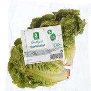 Coop etterlyser salat-kunde etter salmonella-alarm