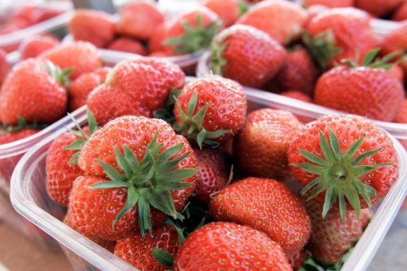 400 tonn butikkplast skal vekk. Til sommeren kommer jordbærene i papp.
