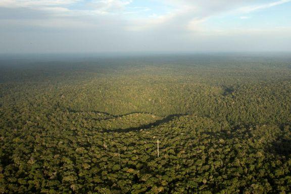 – Viser at de ikke lenger ønsker å stoppe avskogingen av Amazonas