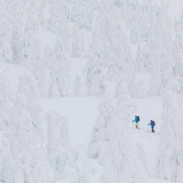 I pudderparadiset kan det falle to meter snø i døgnet