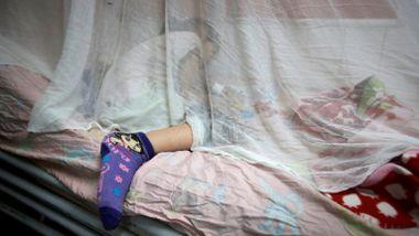 Barn dør av «beinknuserfeberen». I skyggen av koronaen sprer livsfarlige sykdommer seg i rekordfart.