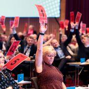 Forslag om å stoppe alle vindmøller på land falt med stort flertall på Frp-landsmøtet