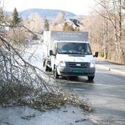 Kraftig vind på deler av Østlandet. Tusenvis uten strøm, og flere stengte fjelloverganger.