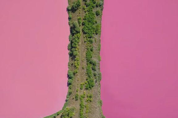 – Ikke få panikk om sjøene er rosa, sa myndighetene. Da ble naboene livredde.