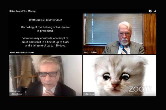 Advokat fremsto som en katt i rettsmøte
