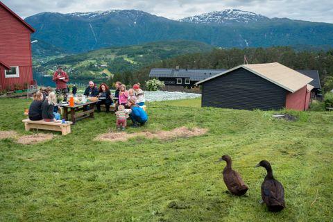 ØKOLOGISK IDYLL: Bordet er dekket, og andelseierne i Undeland gard starter dugnaden med et godt måltid.
