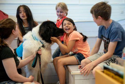 HUNDEKYSS: – Carmen, han liker deg veldig godt, sier Ada da Torjus slikker medeleven. Han slikker dere for å vise at han er glad i dere, forklarer hundefører Stine Olsen. Å kose med hunden er en del av belønningen etter leseøkten.