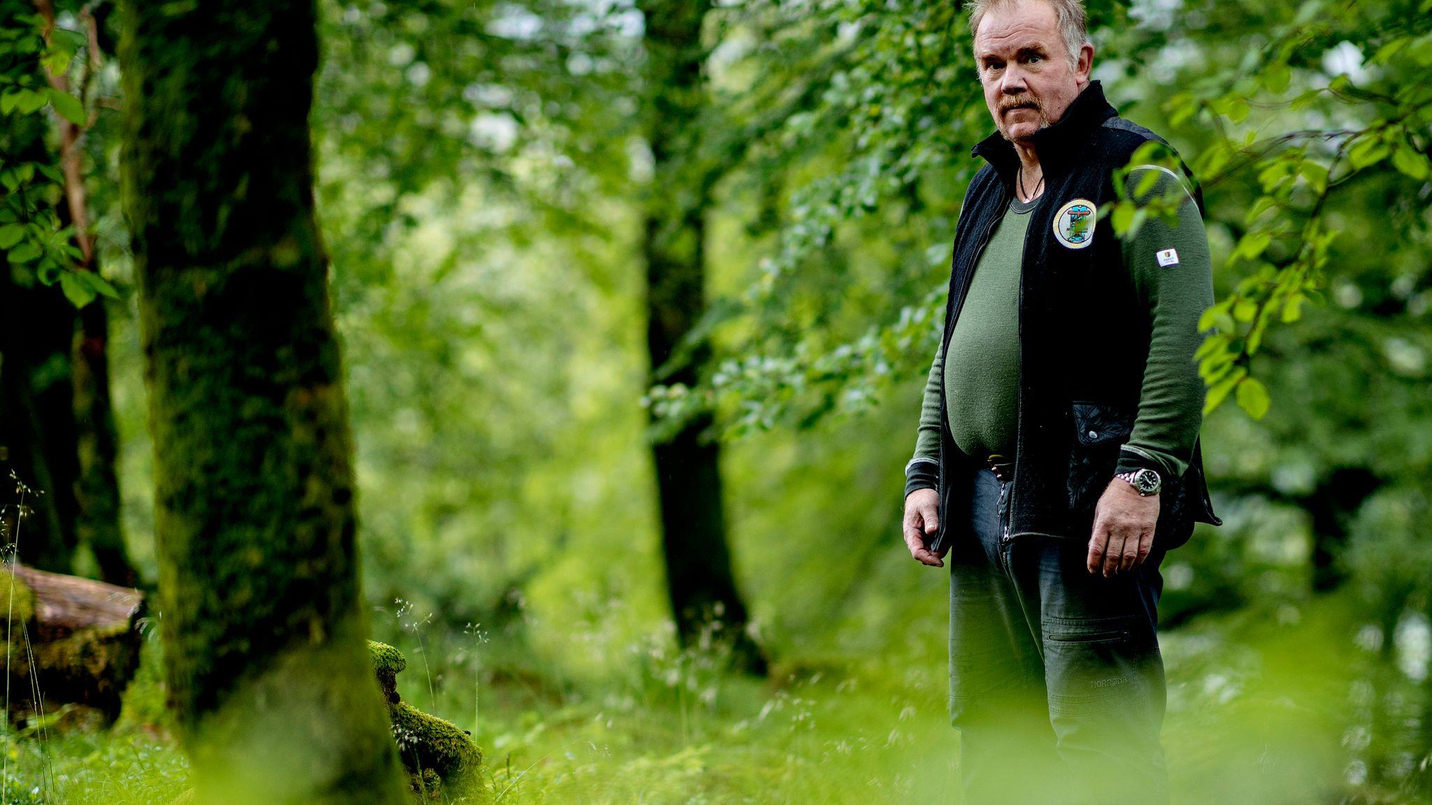 239b34df UT I SKOGEN: Kurt Oddekalv blir 62 år neste uke. Etter to slag har han  måttet trappe ned jobbingen, og er 60 prosent ufør. – Så nå jobber jeg vel  like mye ...