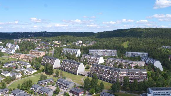 5e5631bb2 I dette nabolaget i Oslo er under halvparten i jobb - Aftenposten