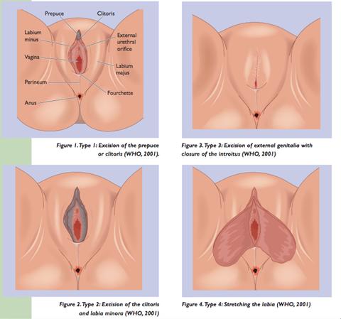 Hvordan få sex sex pic homoseksuell