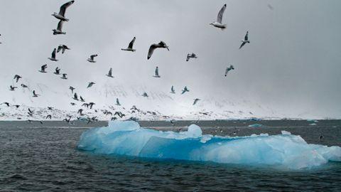 Mindre sjøis i Arktis betyr mindre ferskt smeltevann om sommeren. Det forsinker tilfrysingen o9m vinteren med flere måneder.