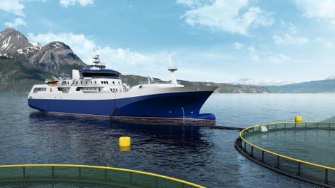 OPPDRETTSREVOLUSJON: Den nye slaktebåten «Norwegian Gannet» har skapt store bølger lenge før den er satt i drift. Om «Norwegian Gannet» hadde slaktet for full maskin hele døgnet, kunne den ha håndtert all laks som produseres på Vestlandet.