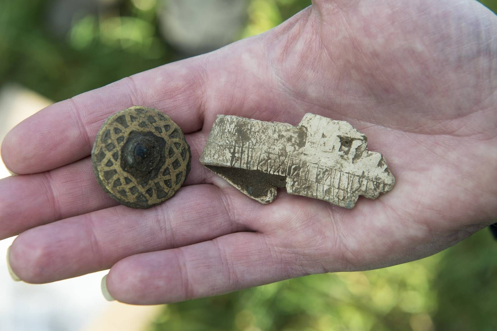 absolutte vs relative datering av fossiler