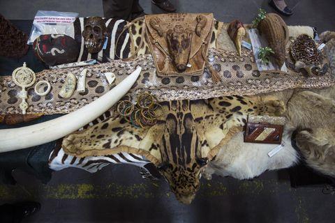 PÅ FY-LISTEN: Dette utvalget viser blant annet skinn fra flekkete leopard, veske av krokodilleskinn og elfenben, varer som er kjøpt i en av butikkene på John F. Kennedy International Airport i New York. FOTO: LUCAS JACKSON