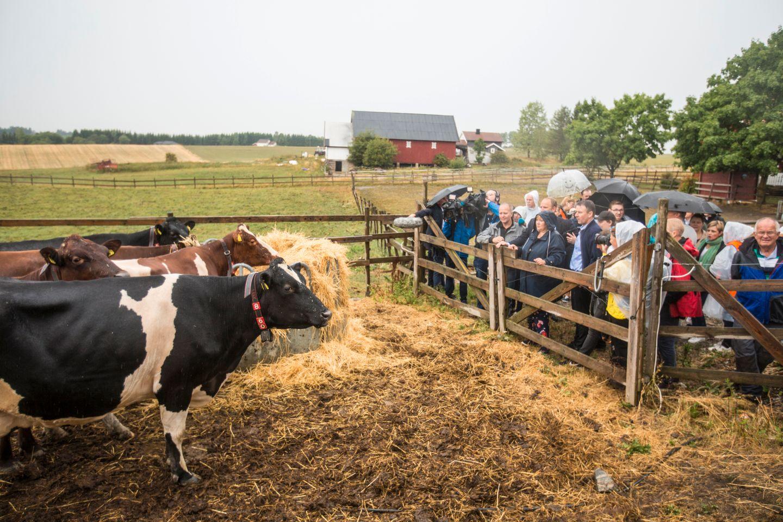 Ingen tiltakstørke i landbruket