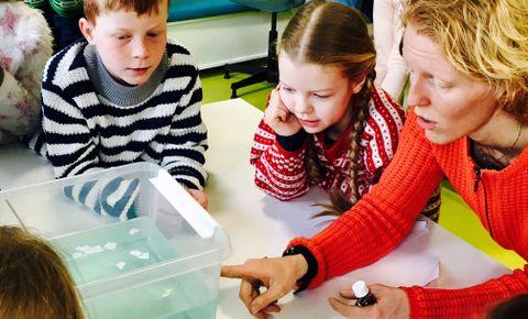 EKSPERIMENT: Havstrømmer kan også lages i et stort plastkar med vann.