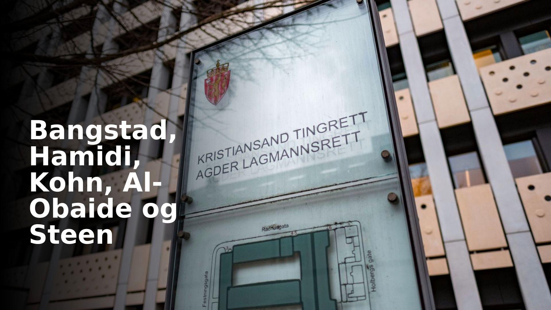 Agder lagmannsrett viser en historieløs holdning til nazisymboler | Bangstad, Hamidi, Kohn, Al-Obaide og Steen