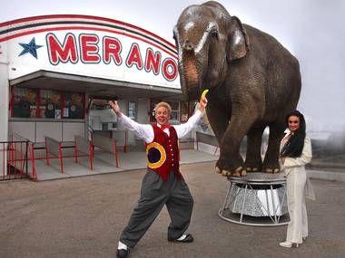 Cirkus Arnardo Stavanger