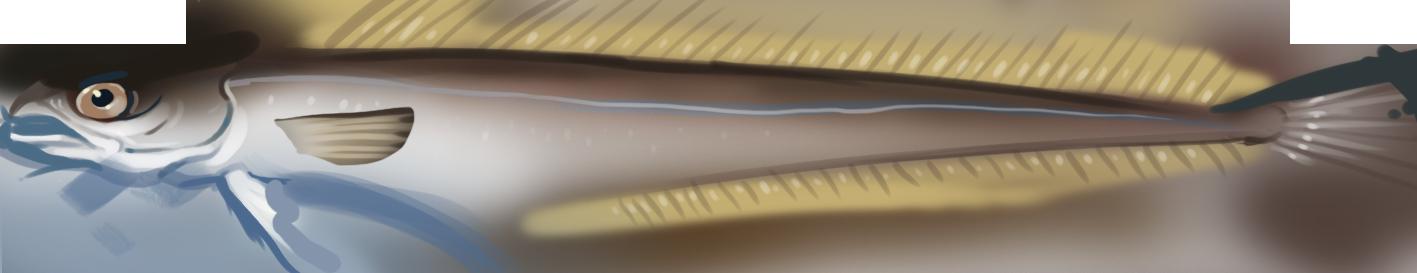 Tegning av en blålange